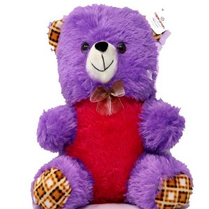 Soft Buddies Teddy Bear Soft Toy