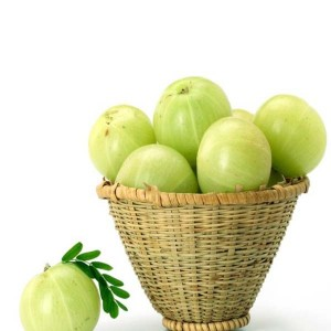 Indian Gooseberry(NELLIKKA)