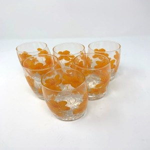 GLASS WARE SET 6 PSC