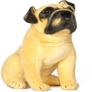 V Golly Jolly Nx Pug Dog - 36 cm (Brown, Black)